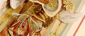 History Of Medicine Collections