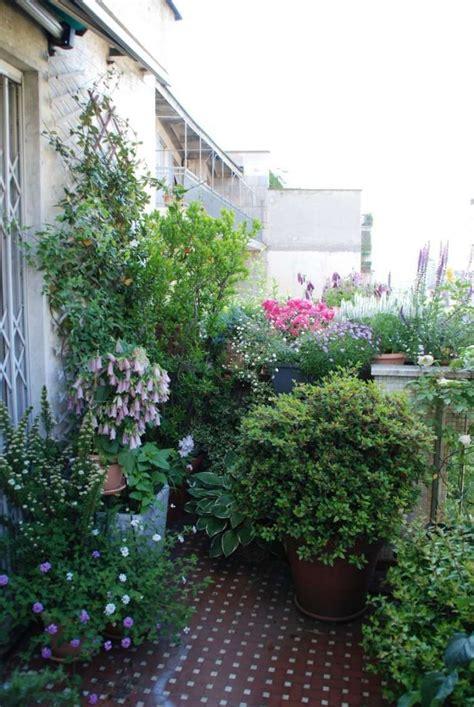 arredare il terrazzo con le piante come abbellire un terrazzo con piante missionmeltdown
