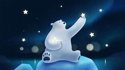Bear Polar Stars Playing Wallpapers Cartoon Night