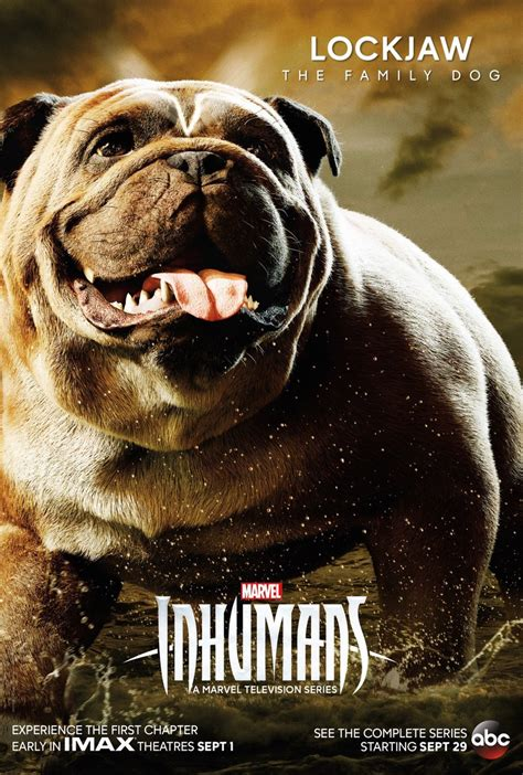 tv series inhumans  character posters including