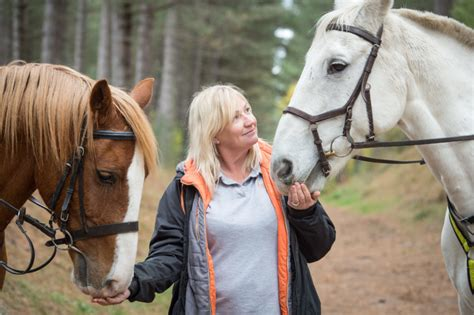 riding horse killed being woods owner chased dog through malone lisa