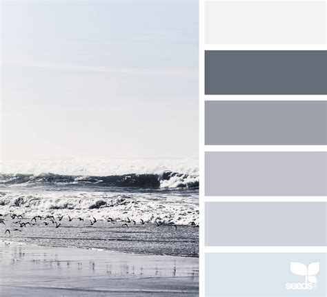 sea tones color palettes design seeds greyscale