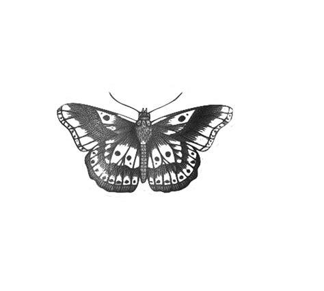 butterfly mariposa tumblr tattoo tatuaje