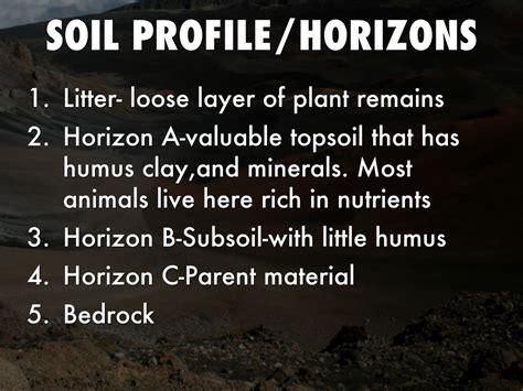 soil  water  abiotic factors  destiny gary