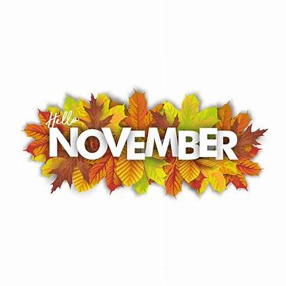 November Hello Laserderm Skin