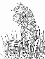 Coloring Horse Adults Pages Pattern sketch template