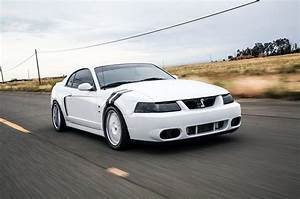2004 Ford Mustang Terminator Cobra Oxford White Front Quarter View - Photo 105117170 ...