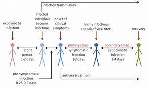 Typical Course Of Influenza Infection Leading To Clinical