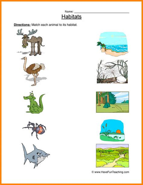 7 animal habitats worksheets wines for dummies