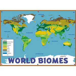 Color-Coded Biomes World Map