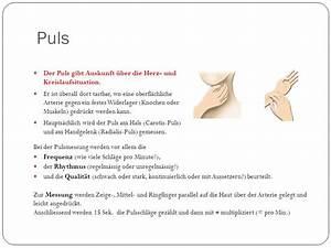 Puls Berechnen 15 Sekunden : mensch und gesundheit bke eva lutz okt krankheiten ppt herunterladen ~ Themetempest.com Abrechnung