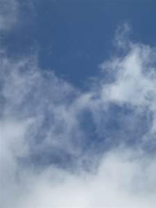 Blau Weiß Spandau : gro artiger 6 platz beim elbe cup in hamburg 2 f jugend fv blau weiss spandau 03 ~ Yasmunasinghe.com Haus und Dekorationen