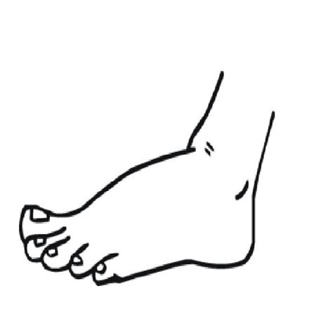 coloring pages  left human foot  coloring pages