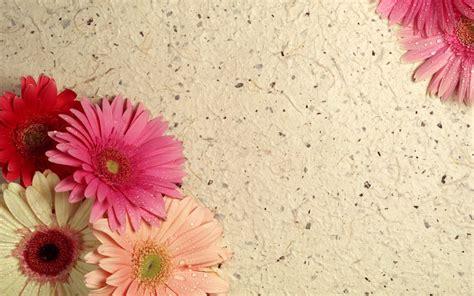 18 im 225 genes de flores para el d 237 a de las madres 18 im 225 genes de flores para el d 237 a de las