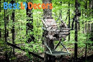 How High Should My Tree Stand Be