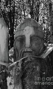 Tree Warrior bw Donegal Ireland by Eddie Barron | Donegal ...