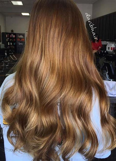 Brown Shades Of Hair by 100 Hair Colors Black Brown