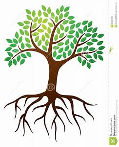 Clipart Of Trees With Roots - clipartsgram.com | Tree ...