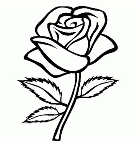 outline pictures of flowers for colouring unsurpassed flowers outlines for colouring new flower