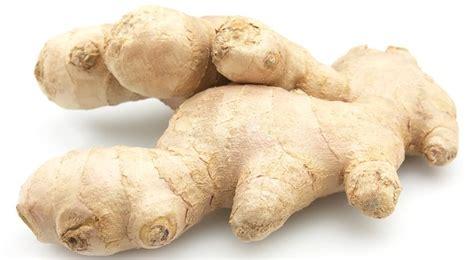 cuisine soldes gingembre bienfaits et vertus quand planter du gingembre
