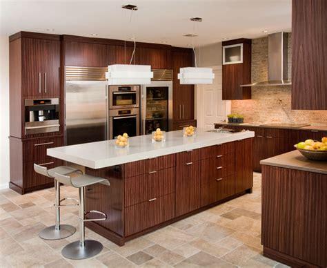 houzz contemporary kitchens contemporary kitchen contemporary kitchen 1717