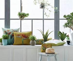 Zimmerpflanzen Für Kinderzimmer : so kommen eure zimmerpflanzen gl cklich durch den winter ~ Orissabook.com Haus und Dekorationen