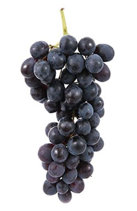 raisin noir