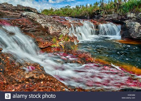 river colors cano cristalitos near cano cristales called the quot river of