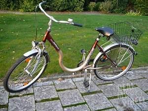 Fahrrad Mit Tiefem Einstieg : damen fahrrad mit tiefem einstieg neue gebrauchte ~ Jslefanu.com Haus und Dekorationen
