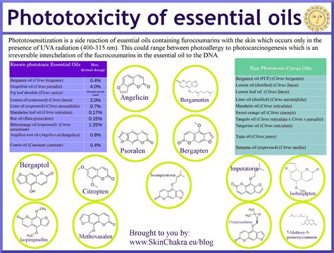 Phototoxicity And Essential Oils  Swettis Beauty Blog