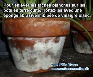 Pots En Terre Cuite Carrefour : taches blanches sur les pots de fleurs le truc simple ~ Dailycaller-alerts.com Idées de Décoration