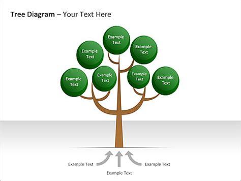 caracteristicas template tree diagram ppt diagrams chart design id 0000001824