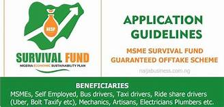 How to Apply for Federal Government N75Bn MSME Survival Fund for Small business & Self-employed
