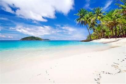 Tropical Beach Palm Landscape Thailand Trees Desktop