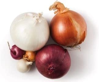 growing onions   grow onions  tips pest