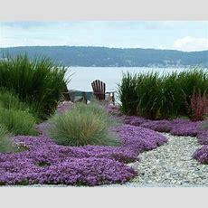 Maritimer Garten Ideen Für Die Gartengestaltung Startseite Design