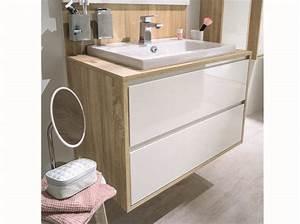 Meuble Pour Petite Salle De Bain : meubles pour petite salle de bain ~ Edinachiropracticcenter.com Idées de Décoration