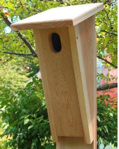 eastern bluebird houses  designs explained   choose world  birdhouses