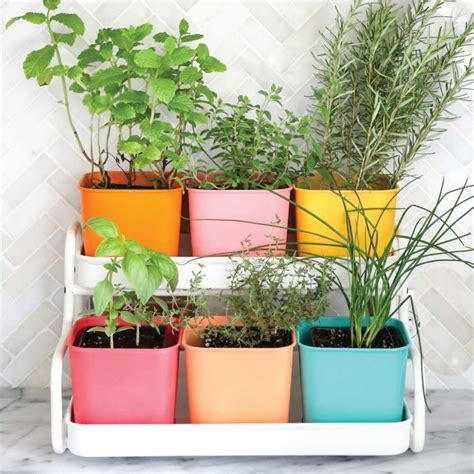 Guide To Growing Herbs [ultimate Herb Garden Ideas]