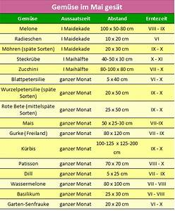 Kartoffel Aussaat Kalender : aussaatkalender aussaat im mai gemuse im mai gesat ~ Whattoseeinmadrid.com Haus und Dekorationen