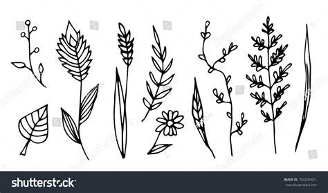 set cute vintage doodles indoor plants stock vector