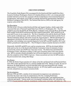 Informal Essays Examples Online Essay Writing Law School Personal Statement