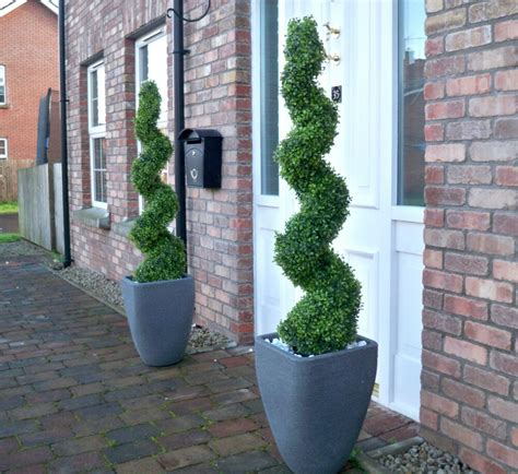 artificial ft cm spiral boxwood buxus topiary