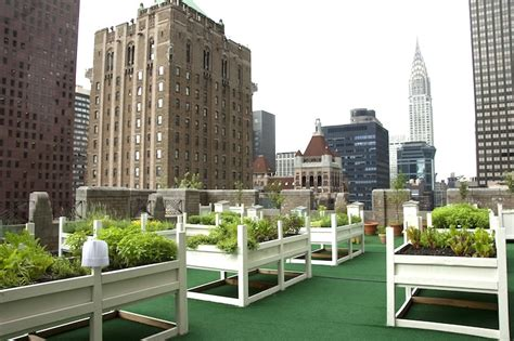8 gorgeous rooftop gardens across nyc waldorf