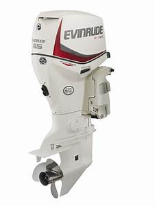 The Outboard Expert  Outboards For Pontoon Boats