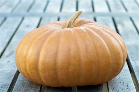 what to make with pumpkin paleo pumpkin spice latte recipe and how to roast a whole pumpkin