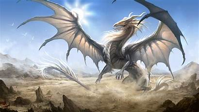 Dragon Wallpapers Screen Wiki Pages