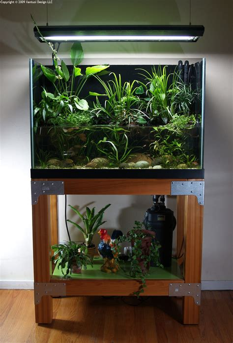 Aquascape Fish Tank by Aquascape Of The Month December 2009 Quot South American
