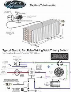 Red Dot Trinary Switch Wiring Diagram  Red  Free Engine Image For User Manual Download