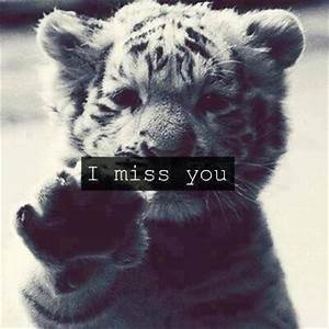 I Miss You Quotes Cute. QuotesGram